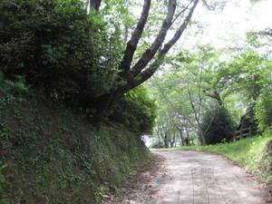 松山城からの庭園へ