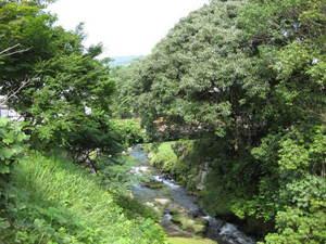松尾川(1)