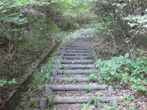 庭園から戻る坂道