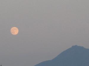 夕月と桜島(2).JPG