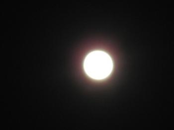 満月になる1日前2011年10月11日.JPG