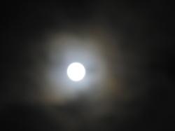 皆既月食(2)2011年12月10日.JPG