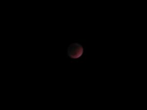 皆既月食(4)2011年12月10日.JPG