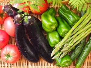 夏のお野菜たち.jpg